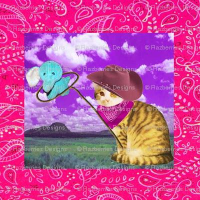 kitty cowboy 2