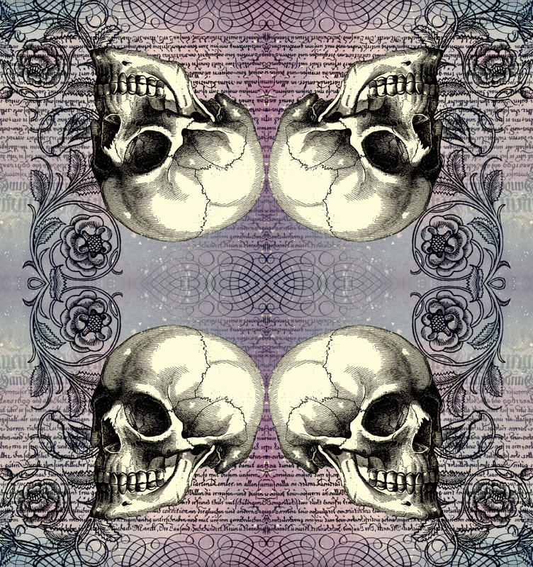 Skull Rose In Lavender Tif Wallpaper Jenithea Spoonflower