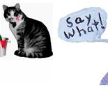 Rpicnik_collagesaywhatcats_thumb