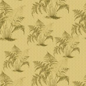 ferns02_gold