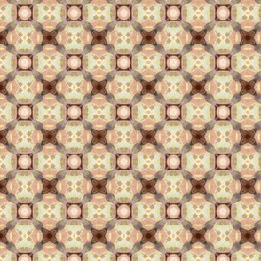 Rodgersia pattern V