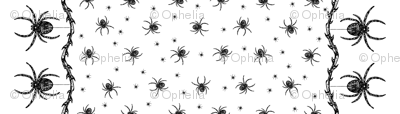 Spider Border (black on white)