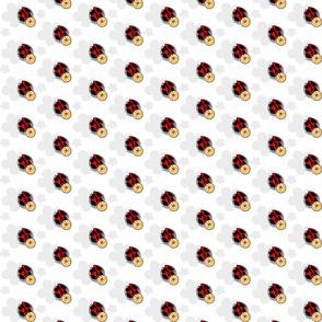 charming ladybug