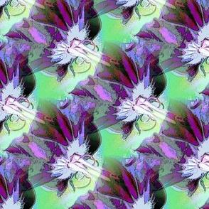 Byzantium geranium