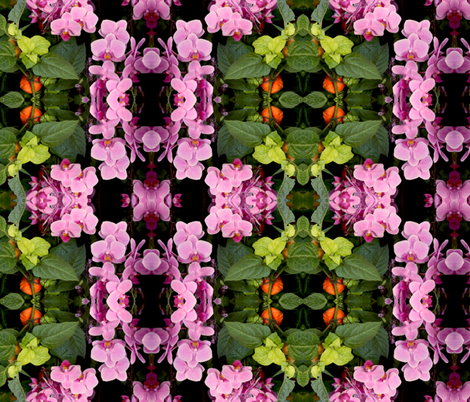 orchids fabric by themothworks on Spoonflower - custom fabric