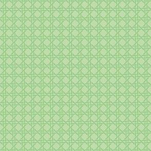 Ice Cream Social :: Mint Chocolate Chip :: Cane