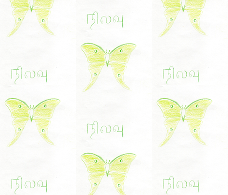 Indian Moon Moth fabric by mohanraj on Spoonflower - custom fabric