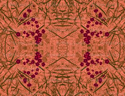 primrose-salmon lox