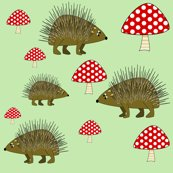 Rrhedgehog_shop_thumb