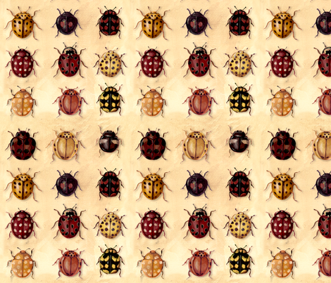 ladybirds fabric by daniellehanson on Spoonflower - custom fabric
