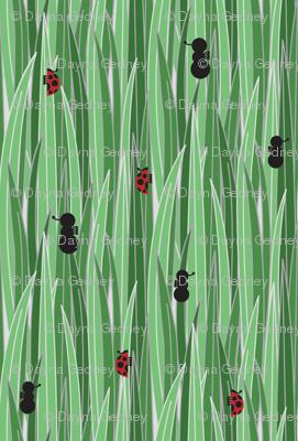 antsandladybugs