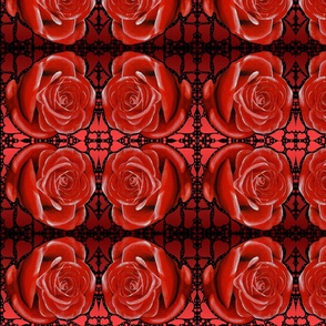 roseandhearts