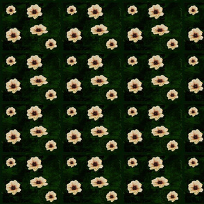 cream_flowers_on_green_velvet