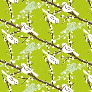 Bird_Blossom