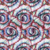 Rrspiralcabbagefabric_ed_shop_thumb