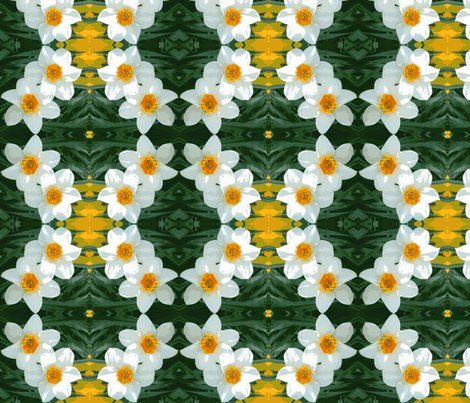 Redit_3_stretch_daffodils_ed_ed_shop_preview