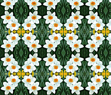 Rcrop_1g_daffodils_ed_ed_shop_preview