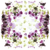 Rceslaviv_hyacinthcolors_shop_thumb
