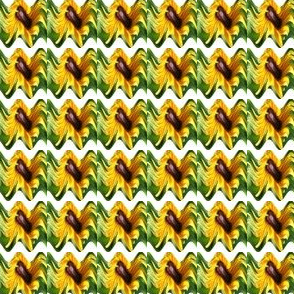 WHRIL_PINCH-_RIBBON500