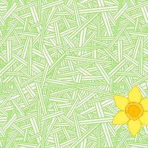 Falling Daffodils