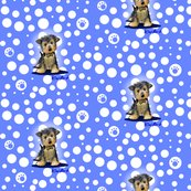 Rryorkieboy_dots_small_blue2_shop_thumb