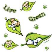 Rlive_green2_shop_thumb