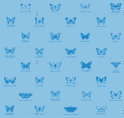 butterfly alphabet - light blue