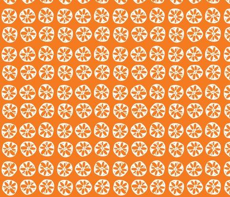 Rrlotusroot_orange_shop_preview