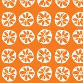 Rrlotusroot_orange_shop_thumb