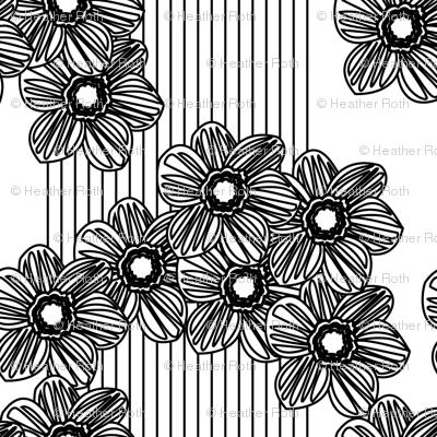 LINES & DAISIES black/white