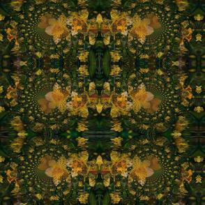Hypnotic_Daffodils