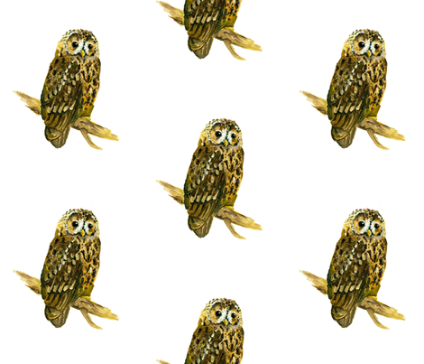 The Owl fabric by taraput on Spoonflower - custom fabric