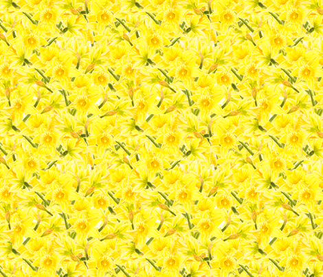 Daffodil Explosion fabric by jenimp on Spoonflower - custom fabric