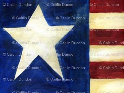 Americana Star and Stripes