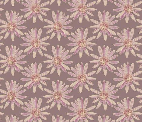 Rrfinal_daisy_garden_-_plum_150dpi_shop_preview