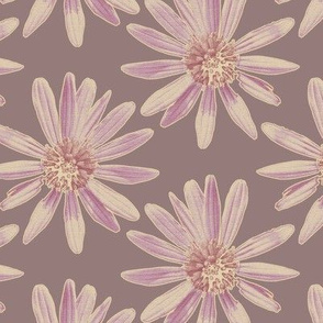 Daisy Garden - Plum