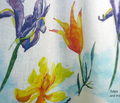 Rrtulips_and_iris_comment_12183_thumb