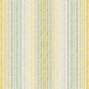 Shabby Stripe Grande