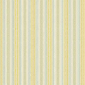Shabby Stripe Petite