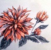 Rcard__orange_flower_shop_thumb