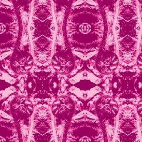 fiddlehead pink