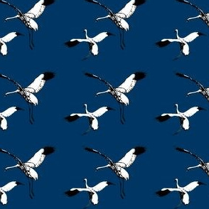 Whooping Cranes on Navy