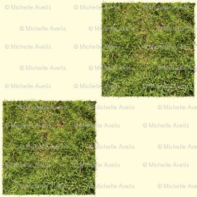grass check