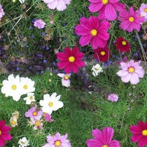 English Garden 2009