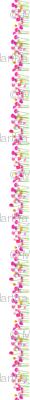 Ranunculus in Repeat