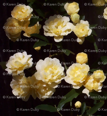 yellow_roses_oil