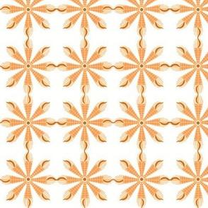 Aldrovanda (Orange)