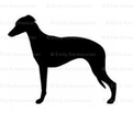Rwhippet_1_comment_10049_thumb