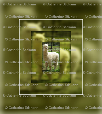 catherinestickann's letterquilt