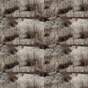 OBX Dunes